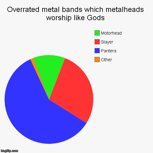 In my opinion,Pantera is guilty for the most Nu-Metal and Metalcore bands and how awful they are | Overrated metal bands which metalheads worship like Gods | Other, Pantera, Slayer, Motorhead | image tagged in heavy metal,pantera,slayer,overrated metal bands which metalheads worship like gods,funny pie charts,memes | made w/ Imgflip pie chart maker