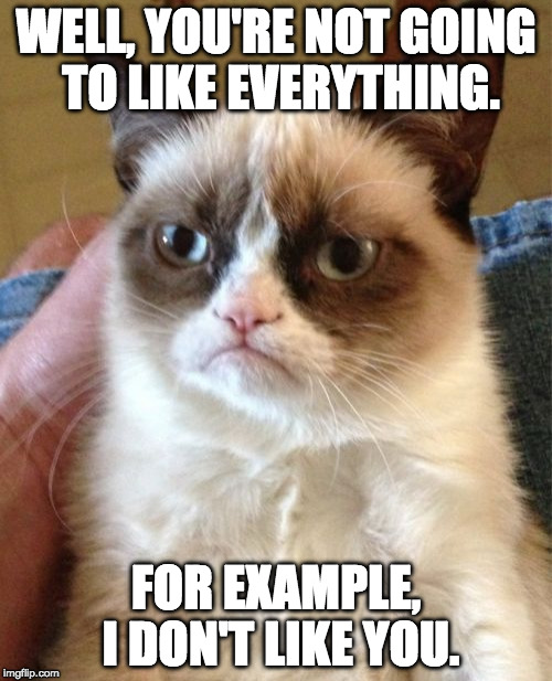 Grumpy Cat Meme | WELL, YOU'RE NOT GOING TO LIKE EVERYTHING. FOR EXAMPLE, I DON'T LIKE YOU. | image tagged in memes,grumpy cat | made w/ Imgflip meme maker