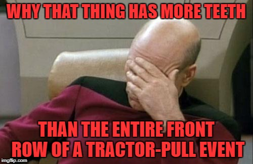 Captain Picard Facepalm Meme | WHY THAT THING HAS MORE TEETH THAN THE ENTIRE FRONT ROW OF A TRACTOR-PULL EVENT | image tagged in memes,captain picard facepalm | made w/ Imgflip meme maker