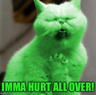 Opera RayCat | IMMA HURT ALL OVER! | image tagged in opera raycat | made w/ Imgflip meme maker