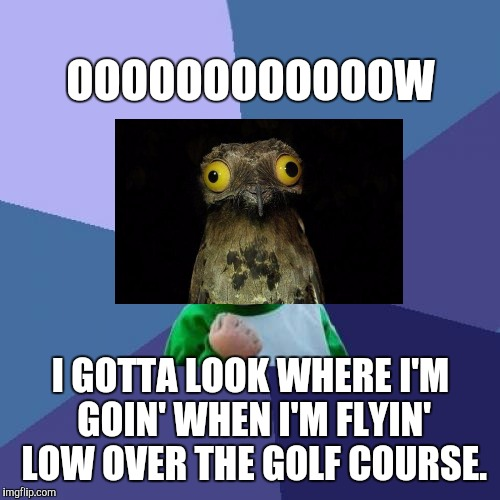 Success Kid Meme | OOOOOOOOOOOOW I GOTTA LOOK WHERE I'M GOIN' WHEN I'M FLYIN' LOW OVER THE GOLF COURSE. | image tagged in memes,success kid | made w/ Imgflip meme maker