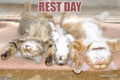 REST DAY | image tagged in sunday mode | made w/ Imgflip meme maker