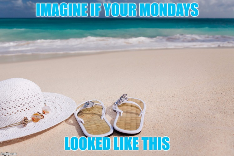 Mondays are better in flip flops | IMAGINE IF YOUR MONDAYS LOOKED LIKE THIS | image tagged in mondays are better in flip flops | made w/ Imgflip meme maker