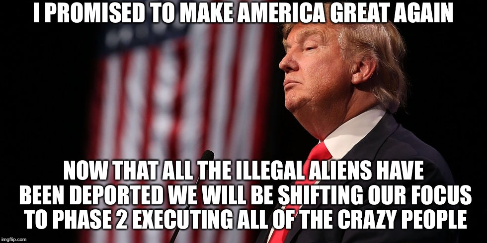 I PROMISED TO MAKE AMERICA GREAT AGAIN NOW THAT ALL THE ILLEGAL ALIENS HAVE BEEN DEPORTED WE WILL BE SHIFTING OUR FOCUS TO PHASE 2 EXECUTING | image tagged in donald trump,memes,funny | made w/ Imgflip meme maker