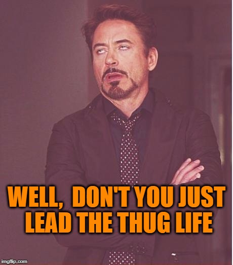 Face You Make Robert Downey Jr Meme | WELL,  DON'T YOU JUST LEAD THE THUG LIFE | image tagged in memes,face you make robert downey jr | made w/ Imgflip meme maker