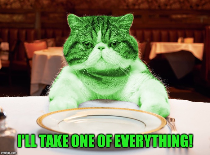RayCat Hungry | I'LL TAKE ONE OF EVERYTHING! | image tagged in raycat hungry,memes,hangry | made w/ Imgflip meme maker