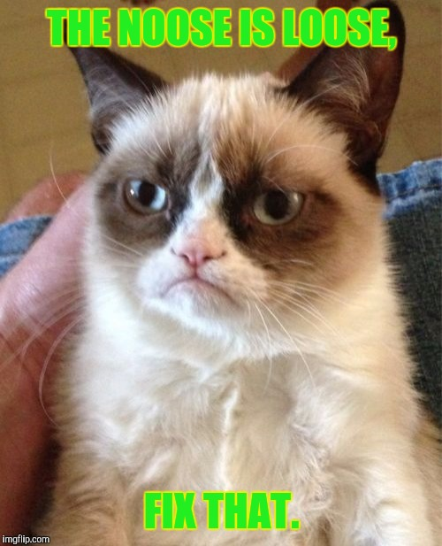 Grumpy Cat Meme | THE NOOSE IS LOOSE, FIX THAT. | image tagged in memes,grumpy cat | made w/ Imgflip meme maker