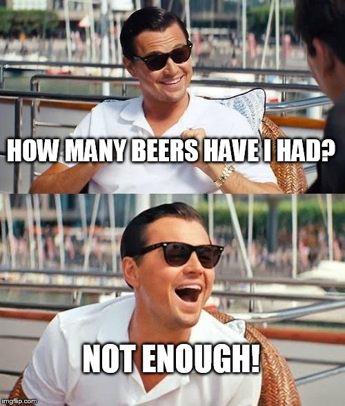 Leonardo Dicaprio Wolf Of Wall Street Meme | HOW MANY BEERS HAVE I HAD? NOT ENOUGH! | image tagged in memes,leonardo dicaprio wolf of wall street | made w/ Imgflip meme maker