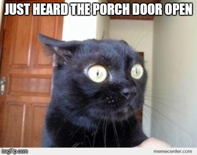 JUST HEARD THE PORCH DOOR OPEN | made w/ Imgflip meme maker