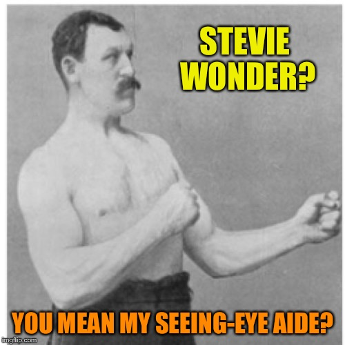 STEVIE WONDER? YOU MEAN MY SEEING-EYE AIDE? | made w/ Imgflip meme maker