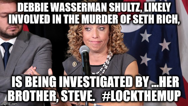 evil little Debbie Wasserman Shultz | DEBBIE WASSERMAN SHULTZ, LIKELY INVOLVED IN THE MURDER OF SETH RICH, IS BEING INVESTIGATED BY ...HER BROTHER, STEVE.   #LOCKTHEMUP | image tagged in evillittledebbie,debbie wasserman shultz,lockthemup,hillary rotten clinton | made w/ Imgflip meme maker