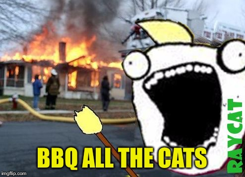 Disaster All The Y | BBQ ALL THE CATS | image tagged in disaster all the y | made w/ Imgflip meme maker