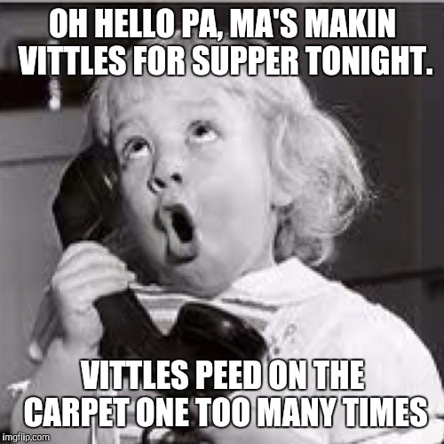 OH HELLO PA, MA'S MAKIN VITTLES FOR SUPPER TONIGHT. VITTLES PEED ON THE CARPET ONE TOO MANY TIMES | made w/ Imgflip meme maker