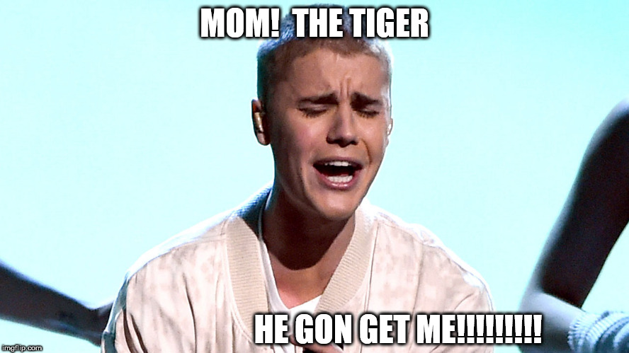 MOM!  THE TIGER HE GON GET ME!!!!!!!!! | made w/ Imgflip meme maker