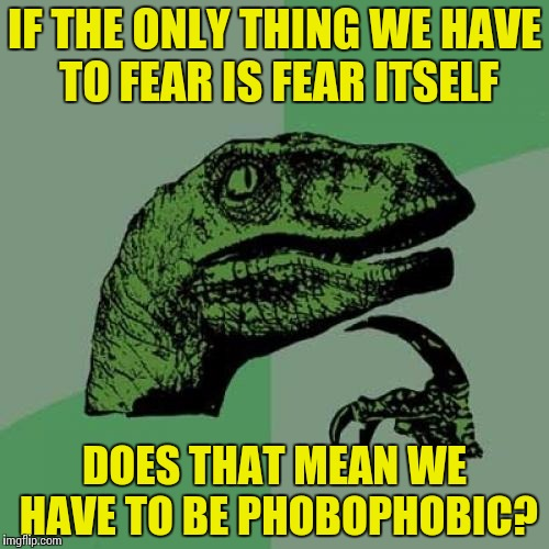 Philosoraptor | IF THE ONLY THING WE HAVE TO FEAR IS FEAR ITSELF DOES THAT MEAN WE HAVE TO BE PHOBOPHOBIC? | image tagged in memes,philosoraptor,franklin d roosevelt,franklin delano roosevelt,phobophobia | made w/ Imgflip meme maker
