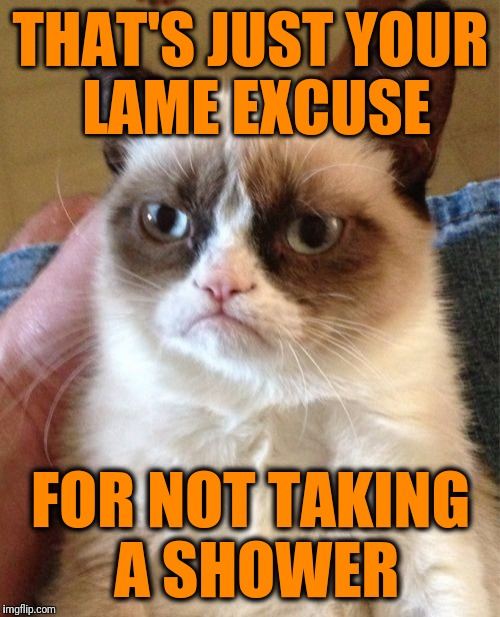 Grumpy Cat Meme | THAT'S JUST YOUR LAME EXCUSE FOR NOT TAKING A SHOWER | image tagged in memes,grumpy cat | made w/ Imgflip meme maker
