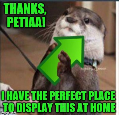 THANKS, PETIAA! I HAVE THE PERFECT PLACE TO DISPLAY THIS AT HOME | made w/ Imgflip meme maker