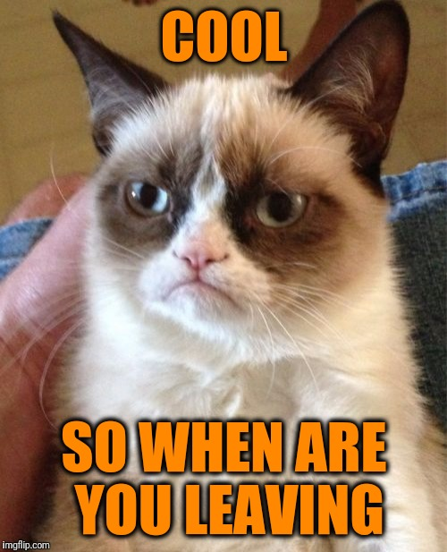 Grumpy Cat Meme | COOL SO WHEN ARE YOU LEAVING | image tagged in memes,grumpy cat | made w/ Imgflip meme maker
