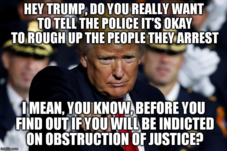 Another good idea Mr.President! | HEY TRUMP, DO YOU REALLY WANT TO TELL THE POLICE IT'S OKAY TO ROUGH UP THE PEOPLE THEY ARREST I MEAN, YOU KNOW, BEFORE YOU FIND OUT IF YOU W | image tagged in trump,humor,obstruction of justice,police,police brutality | made w/ Imgflip meme maker