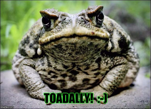 TOADALLY!  :-) | made w/ Imgflip meme maker