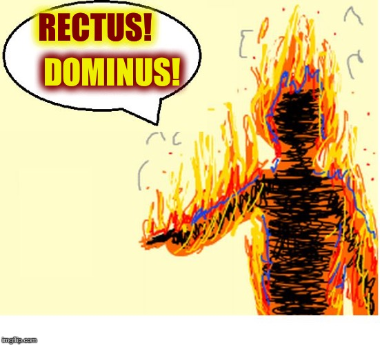 On Fire | RECTUS! DOMINUS! | image tagged in on fire | made w/ Imgflip meme maker