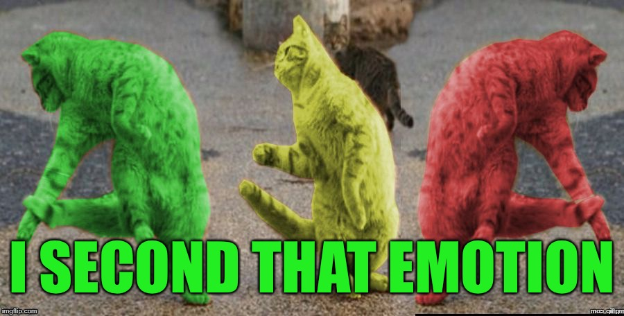 Three Dancing RayCats | I SECOND THAT EMOTION | image tagged in three dancing raycats | made w/ Imgflip meme maker