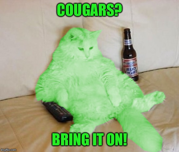 RayCat Chillin' | COUGARS? BRING IT ON! | image tagged in raycat chillin' | made w/ Imgflip meme maker