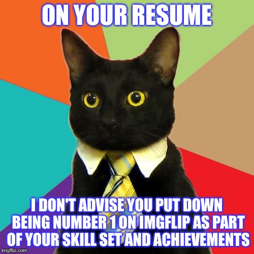 Business Cat Meme | ON YOUR RESUME I DON'T ADVISE YOU PUT DOWN BEING NUMBER 1 ON IMGFLIP AS PART OF YOUR SKILL SET AND ACHIEVEMENTS | image tagged in memes,business cat | made w/ Imgflip meme maker