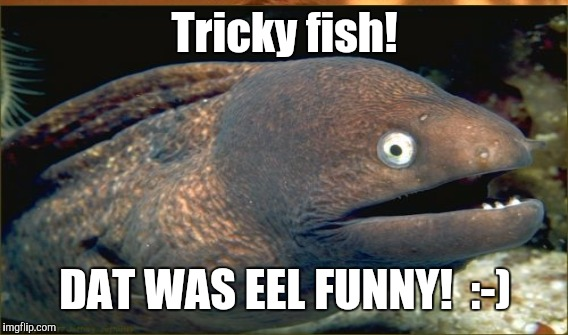 Tricky fish! DAT WAS EEL FUNNY!  :-) | made w/ Imgflip meme maker