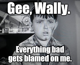 Beaver Cleaver  | Gee, Wally. Everything bad gets blamed on me. | image tagged in beaver cleaver | made w/ Imgflip meme maker