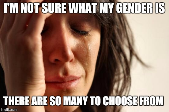 First World Problems Meme | I'M NOT SURE WHAT MY GENDER IS THERE ARE SO MANY TO CHOOSE FROM | image tagged in memes,first world problems | made w/ Imgflip meme maker