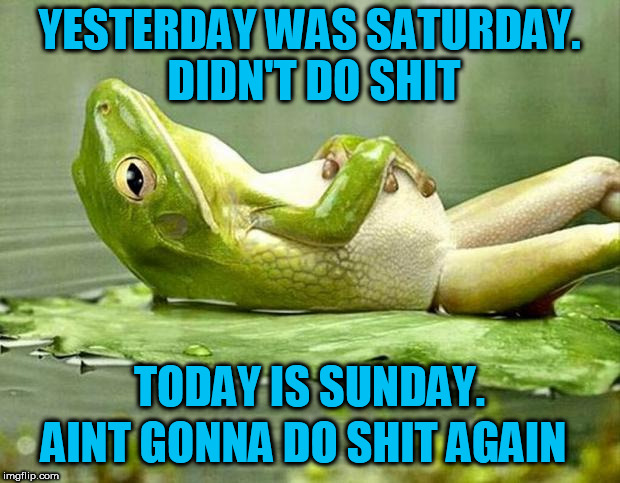 Lazy frog | YESTERDAY WAS SATURDAY. DIDN'T DO SHIT TODAY IS SUNDAY. AINT GONNA DO SHIT AGAIN | image tagged in lazy frog,sunday,fuck this shit,lazy,shit,no shit | made w/ Imgflip meme maker