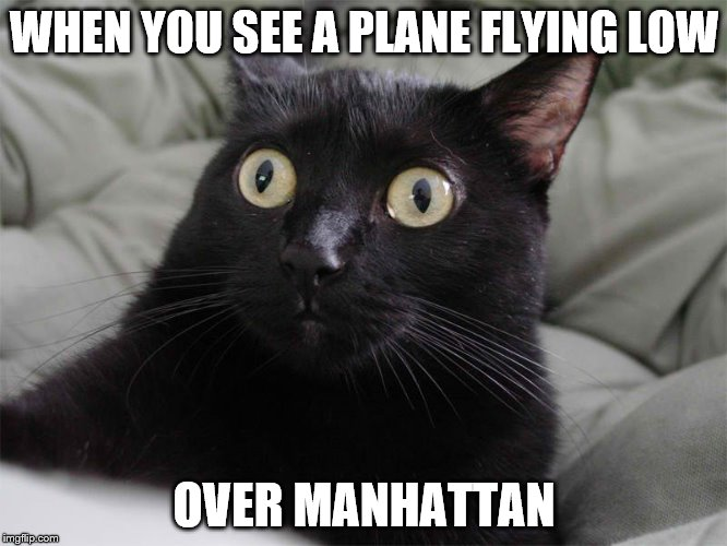 PLANE FLYING LOW OVER MANHATTAN |  WHEN YOU SEE A PLANE FLYING LOW; OVER MANHATTAN | image tagged in 9/11,oh shit,wtf,al qaeda,isis,nyc | made w/ Imgflip meme maker