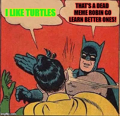 Batman Slapping Robin Meme | I LIKE TURTLES THAT'S A DEAD MEME ROBIN GO LEARN BETTER ONES! | image tagged in memes,batman slapping robin | made w/ Imgflip meme maker