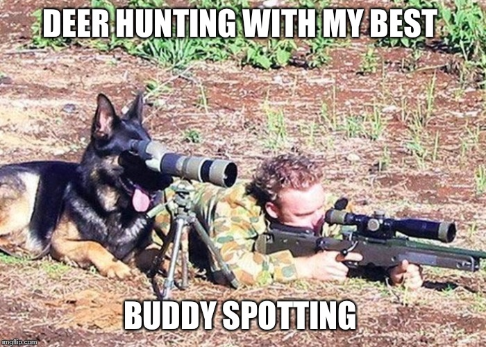 Dog spotter on sniper team | DEER HUNTING WITH MY BEST BUDDY SPOTTING | image tagged in dog spotter on sniper team | made w/ Imgflip meme maker