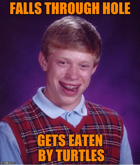 Bad Luck Brian Meme | FALLS THROUGH HOLE GETS EATEN BY TURTLES | image tagged in memes,bad luck brian | made w/ Imgflip meme maker