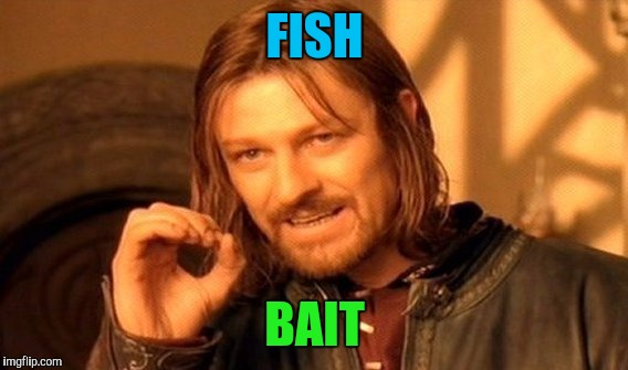 One Does Not Simply Meme | FISH BAIT | image tagged in memes,one does not simply | made w/ Imgflip meme maker