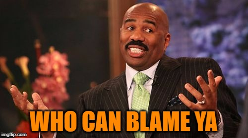 Steve Harvey Meme | WHO CAN BLAME YA | image tagged in memes,steve harvey | made w/ Imgflip meme maker