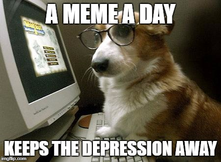 Smart Dog | A MEME A DAY KEEPS THE DEPRESSION AWAY | image tagged in smart dog | made w/ Imgflip meme maker