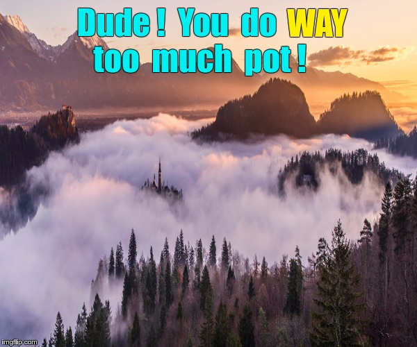 Too much pot | Dude !  You  do too  much  pot ! WAY | image tagged in fog forest castle mountains,memes,pot,drugs | made w/ Imgflip meme maker