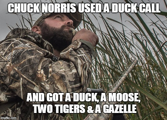 Chuck Norris duck call | CHUCK NORRIS USED A DUCK CALL AND GOT A DUCK, A MOOSE, TWO TIGERS & A GAZELLE | image tagged in duck call,chuck norris,memes | made w/ Imgflip meme maker