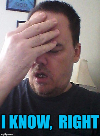 face palm | I KNOW,  RIGHT | image tagged in face palm | made w/ Imgflip meme maker