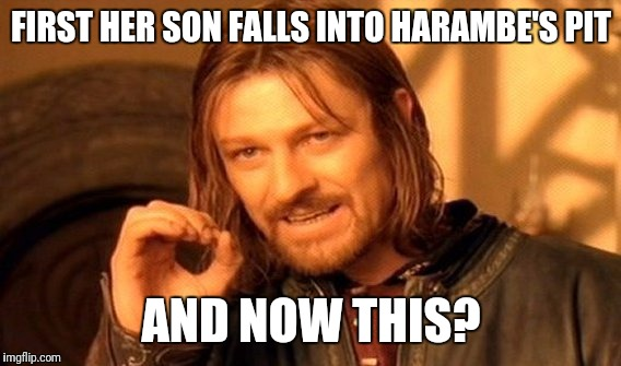 One Does Not Simply Meme | FIRST HER SON FALLS INTO HARAMBE'S PIT AND NOW THIS? | image tagged in memes,one does not simply | made w/ Imgflip meme maker