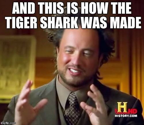 Ancient Aliens Meme | AND THIS IS HOW THE TIGER SHARK WAS MADE | image tagged in memes,ancient aliens | made w/ Imgflip meme maker
