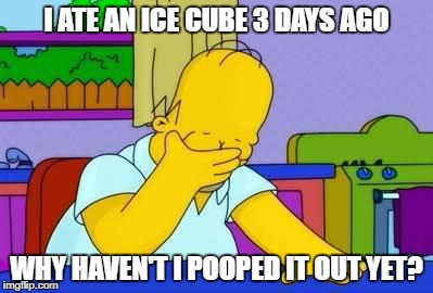 OMG homer | I ATE AN ICE CUBE 3 DAYS AGO WHY HAVEN'T I POOPED IT OUT YET? | image tagged in omg homer | made w/ Imgflip meme maker