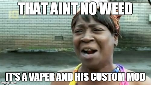 Aint Nobody Got Time For That Meme | THAT AINT NO WEED IT'S A VAPER AND HIS CUSTOM MOD | image tagged in memes,aint nobody got time for that | made w/ Imgflip meme maker