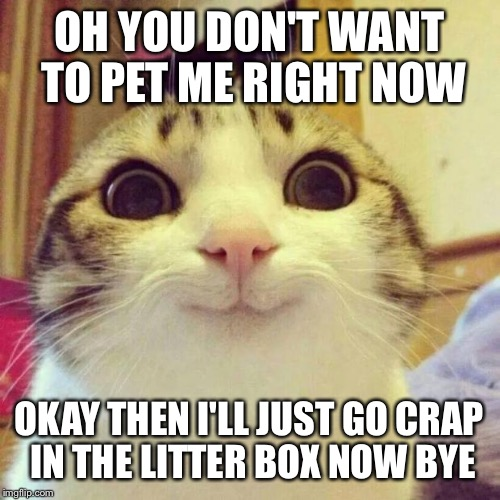 Smiling Cat Meme | OH YOU DON'T WANT TO PET ME RIGHT NOW OKAY THEN I'LL JUST GO CRAP IN THE LITTER BOX NOW BYE | image tagged in memes,smiling cat | made w/ Imgflip meme maker