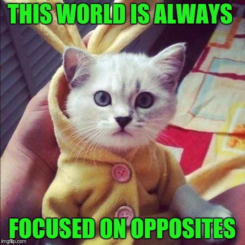 THIS WORLD IS ALWAYS FOCUSED ON OPPOSITES | made w/ Imgflip meme maker