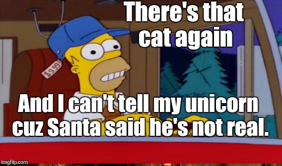 There's that cat again And I can't tell my unicorn cuz Santa said he's not real. | made w/ Imgflip meme maker