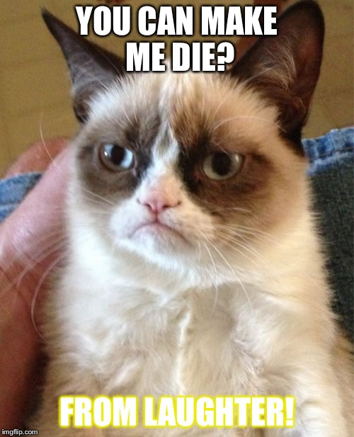 Grumpy Cat Meme | YOU CAN MAKE ME DIE? FROM LAUGHTER! | image tagged in memes,grumpy cat | made w/ Imgflip meme maker